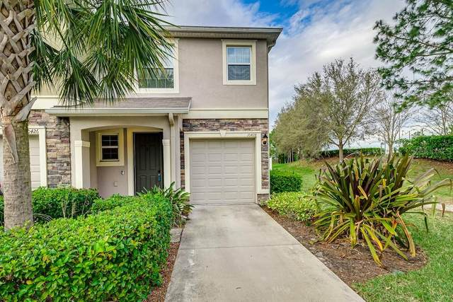 10428 Orchid Mist Court, Riverview, FL 33578 (MLS #T3292021) :: Medway Realty