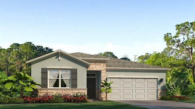 13205 Waterleaf Garden Circle, Riverview, FL 33579 (MLS #T3292090) :: Cartwright Realty