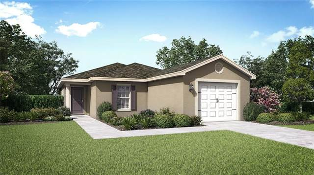 980 Mansfield Road, Tavares, FL 32778 (MLS #T3292183) :: The Duncan Duo Team