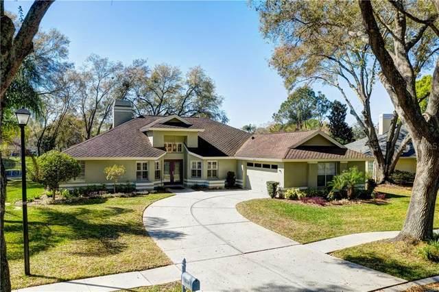 16714 Sheffield Park Drive, Lutz, FL 33549 (MLS #T3292193) :: Premier Home Experts