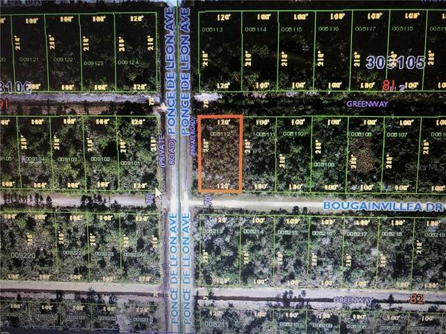 324 Bougainvillea, Indian Lake Estates, FL 33855 (MLS #T3292202) :: Delta Realty, Int'l.