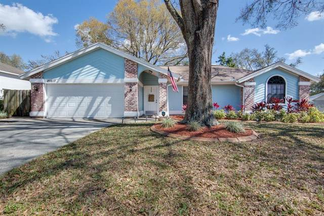 23217 Sierra Road, Land O Lakes, FL 34639 (MLS #T3292205) :: Prestige Home Realty