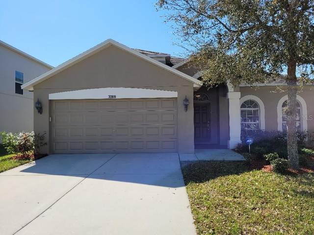 30616 Casewell Place, Wesley Chapel, FL 33545 (MLS #T3292281) :: Delgado Home Team at Keller Williams