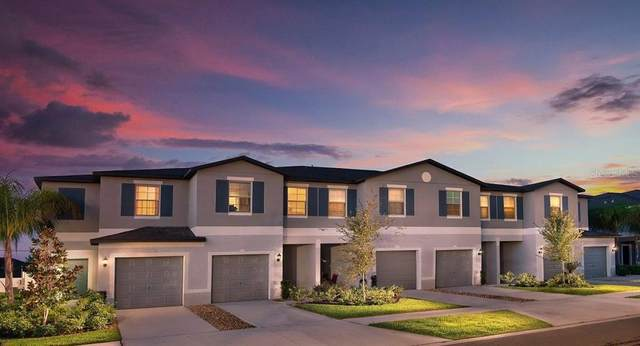 13223 Dupree Hills Place, Riverview, FL 33579 (MLS #T3292303) :: The Brenda Wade Team