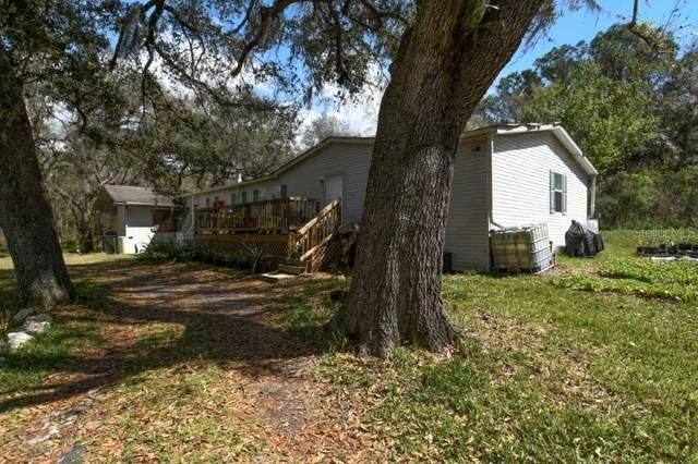 32200 Taylor Grade Road, Duette, FL 34219 (MLS #T3292318) :: EXIT King Realty