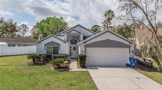 24034 Geese Circle, Land O Lakes, FL 34639 (MLS #T3292351) :: Premier Home Experts
