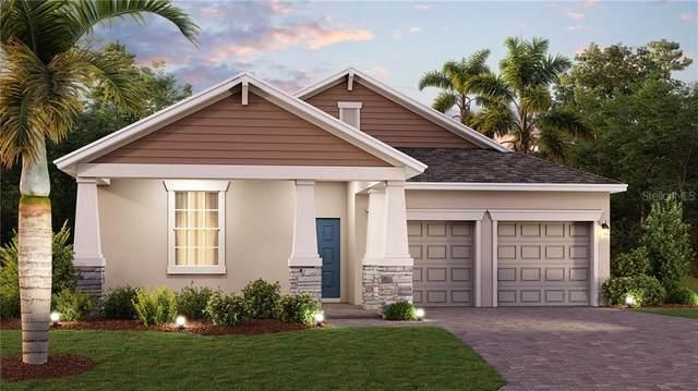 1887 Good Neighbor Loop, Kissimmee, FL 34744 (MLS #T3292417) :: RE/MAX Premier Properties