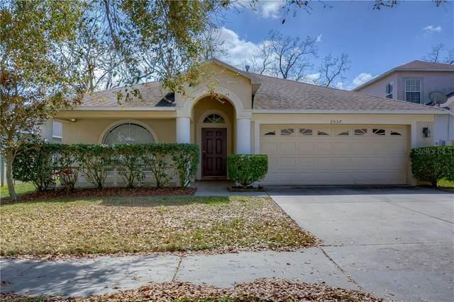 2537 Peekskill Road, Valrico, FL 33594 (MLS #T3292419) :: Everlane Realty