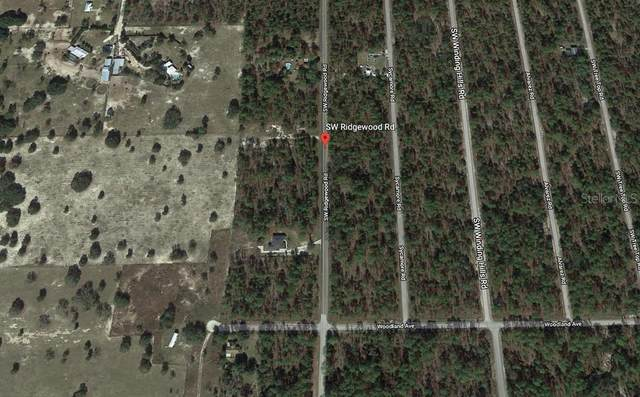 SW Ridgewood Road Lot 42, Dunnellon, FL 34431 (MLS #T3292441) :: Burwell Real Estate