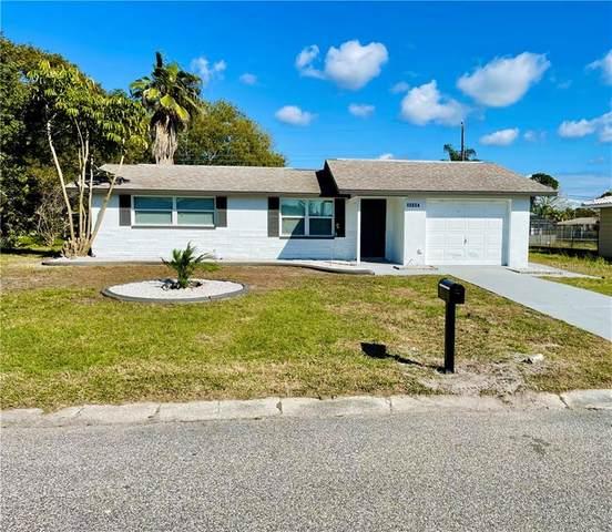 10534 Hibiscus Drive, Port Richey, FL 34668 (MLS #T3292442) :: Team Borham at Keller Williams Realty