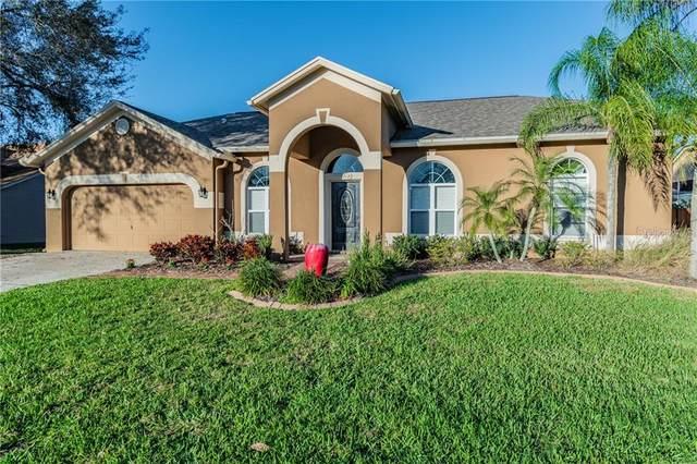 19713 Wyndcliff Drive, Odessa, FL 33556 (MLS #T3292445) :: Premier Home Experts