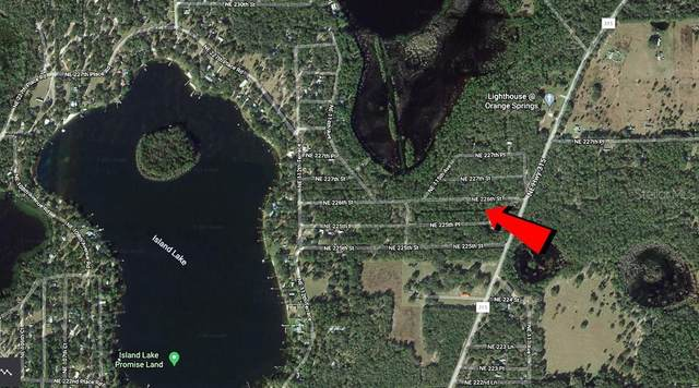 NE 226 Th Street, Fort Mc Coy, FL 32134 (MLS #T3292450) :: Team Borham at Keller Williams Realty
