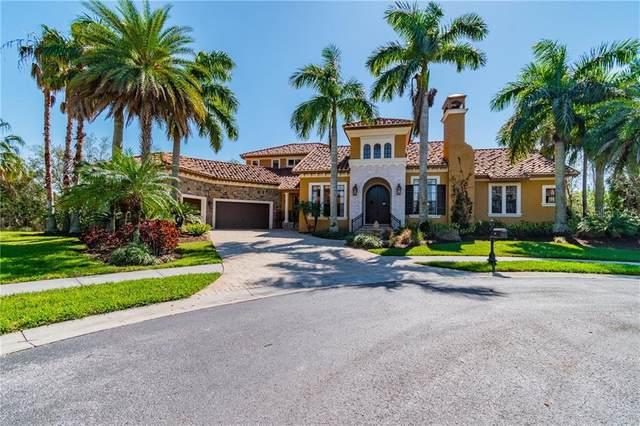 292 Mobbly Bay Drive, Oldsmar, FL 34677 (MLS #T3292461) :: Delgado Home Team at Keller Williams