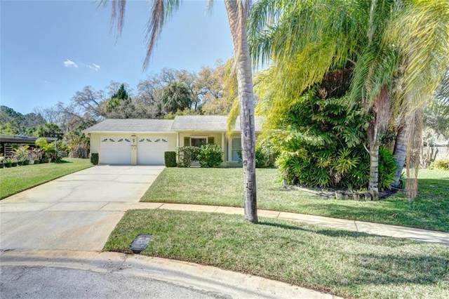 7004 Halifax Court, Tampa, FL 33615 (MLS #T3292486) :: The Duncan Duo Team