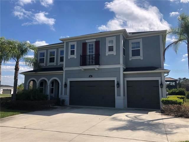17912 Barn Close Drive, Lutz, FL 33559 (MLS #T3292488) :: Premier Home Experts