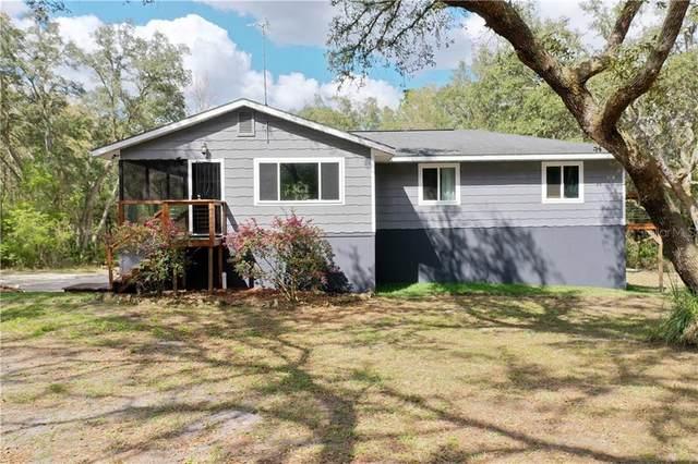 7332 Idlewood Drive, Webster, FL 33597 (MLS #T3292534) :: Bridge Realty Group