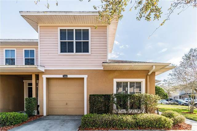 7909 Bally Money Road, Tampa, FL 33610 (MLS #T3292557) :: CGY Realty