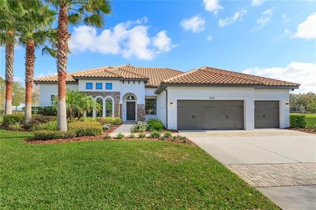 17429 Varona Place, Lutz, FL 33548 (MLS #T3292576) :: Premier Home Experts