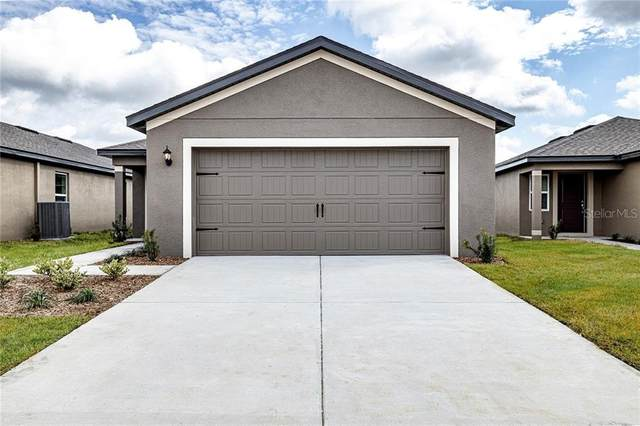 5333 Fez Court, Brooksville, FL 34602 (MLS #T3292581) :: The Robertson Real Estate Group