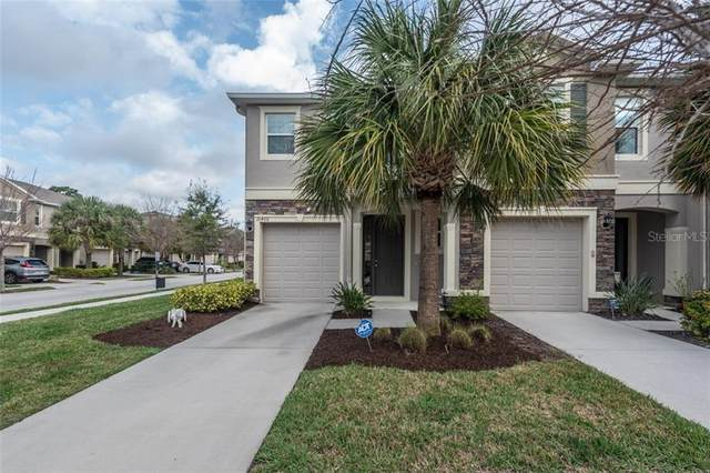 10406 Orchid Mist Court, Riverview, FL 33578 (MLS #T3292620) :: The Duncan Duo Team