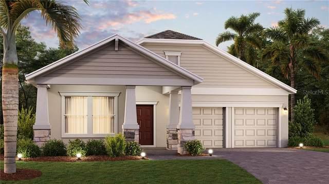 1883 Good Neighbor Loop, Kissimmee, FL 34744 (MLS #T3292637) :: CGY Realty