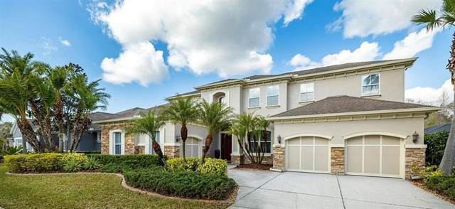 12009 Meridian Point Drive, Tampa, FL 33626 (MLS #T3292705) :: Premier Home Experts