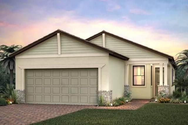 2555 Brassica Drive, North Port, FL 34289 (MLS #T3292712) :: Burwell Real Estate