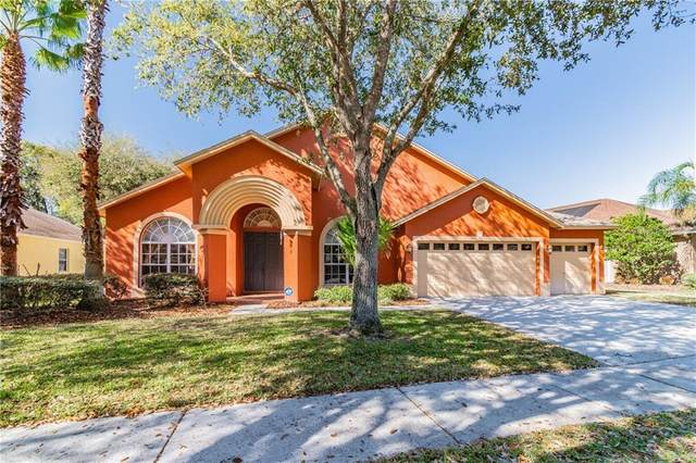 8343 Golden Prairie Drive, Tampa, FL 33647 (MLS #T3292746) :: Delgado Home Team at Keller Williams