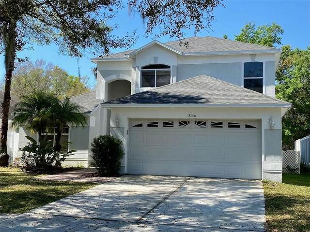 18146 Sandy Pointe Dr, Tampa, FL 33647 (MLS #T3292800) :: Delgado Home Team at Keller Williams