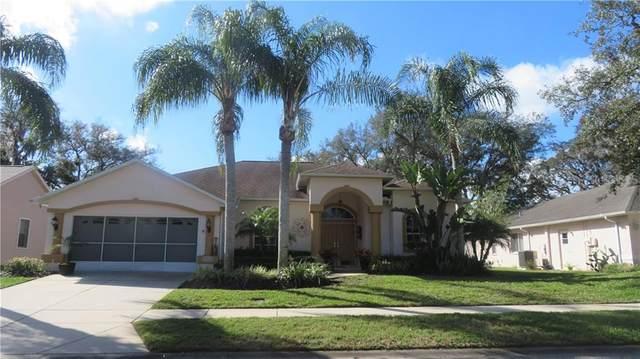 13440 Knotty Lane, Hudson, FL 34669 (MLS #T3292828) :: The Nathan Bangs Group