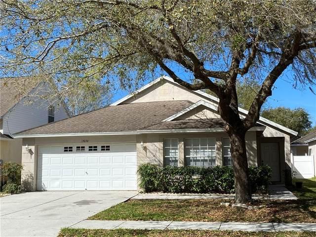 13034 Terrace Springs Drive, Temple Terrace, FL 33637 (MLS #T3292850) :: Team Borham at Keller Williams Realty
