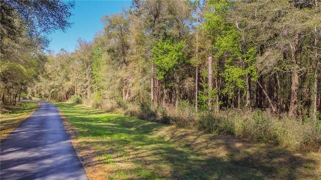 Virginia Lee Cir, Brooksville, FL 34602 (MLS #T3292851) :: Vacasa Real Estate