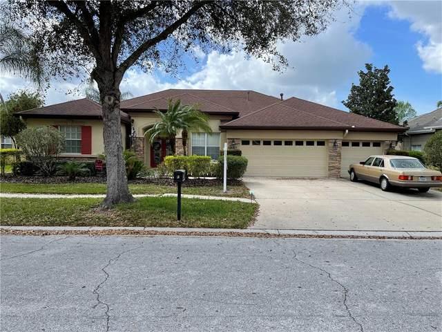 15720 Ibisridge Drive, Lithia, FL 33547 (MLS #T3292887) :: The Duncan Duo Team