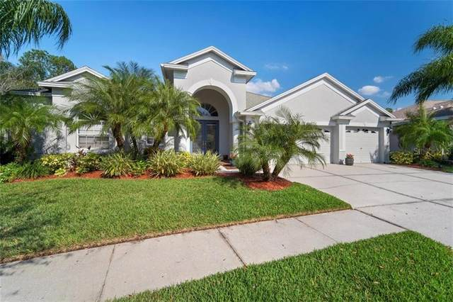 10755 Plantation Bay Drive, Tampa, FL 33647 (MLS #T3292916) :: Team Borham at Keller Williams Realty