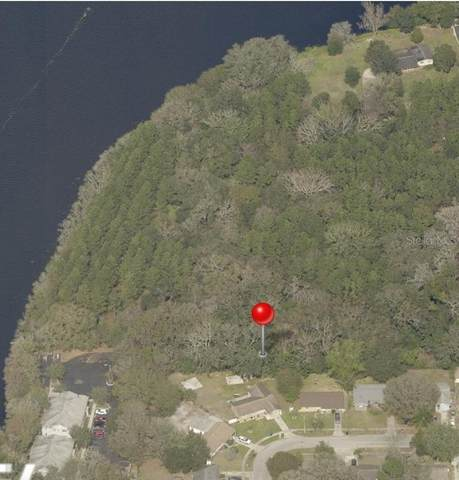 4407 Kirby Drive, Tampa, FL 33617 (MLS #T3292938) :: The Duncan Duo Team