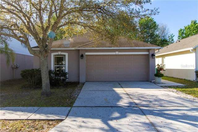 30422 Birdhouse Drive, Wesley Chapel, FL 33545 (MLS #T3293022) :: Realty One Group Skyline / The Rose Team