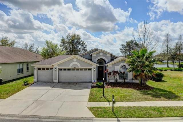 6919 Pine Springs Drive, Wesley Chapel, FL 33545 (MLS #T3293151) :: Griffin Group