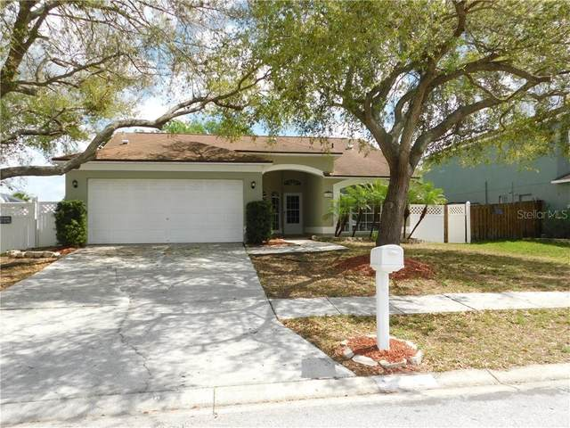 13308 Beechberry Drive, Riverview, FL 33579 (MLS #T3293159) :: New Home Partners