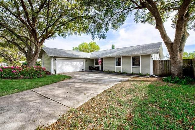 53 Turnstone Drive, Safety Harbor, FL 34695 (MLS #T3293202) :: Delta Realty, Int'l.