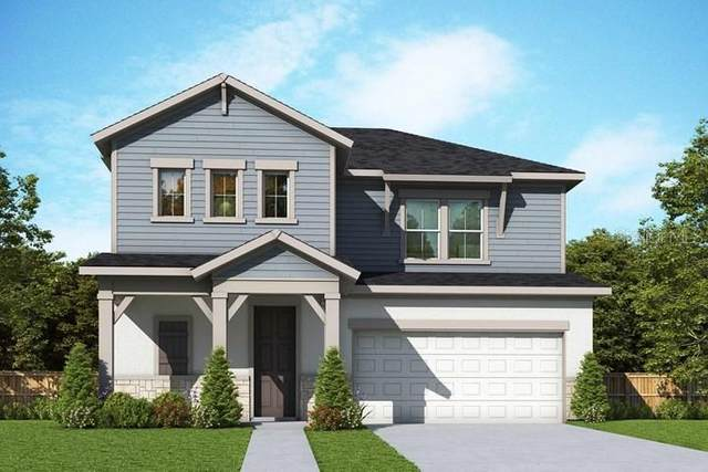 508 Beltrees Street, Dunedin, FL 34698 (MLS #T3293217) :: Everlane Realty