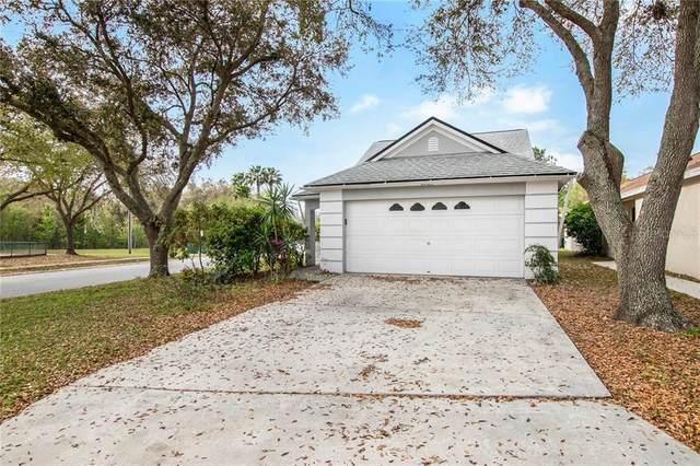6023 Sand Key Lane, Wesley Chapel, FL 33545 (MLS #T3293226) :: Pepine Realty