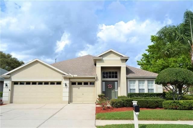 16919 Nikki Lane, Odessa, FL 33556 (MLS #T3293305) :: EXIT King Realty
