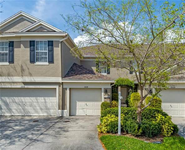11218 Windsor Place Circle, Tampa, FL 33626 (MLS #T3293314) :: Griffin Group