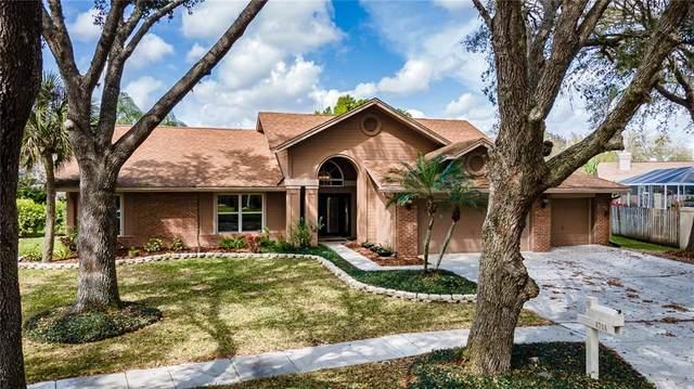8708 Ballantrae Way, Tampa, FL 33647 (MLS #T3293333) :: Pepine Realty