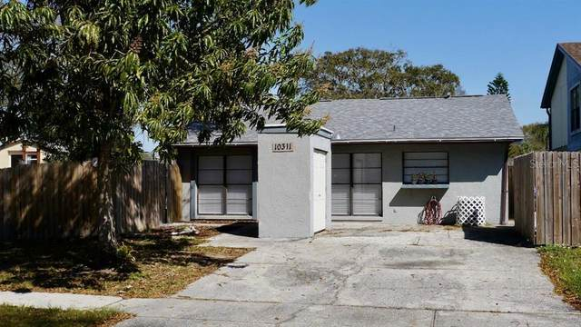10311 Blue Bell Place, Tampa, FL 33624 (MLS #T3293343) :: The Price Group