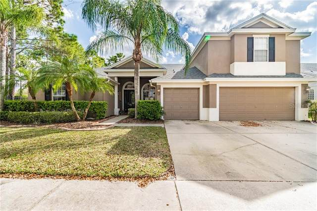 19104 Autumn Woods Avenue, Tampa, FL 33647 (MLS #T3293361) :: The Duncan Duo Team