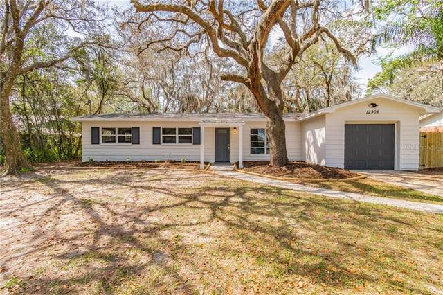 12908 N Rome Avenue, Tampa, FL 33612 (MLS #T3293366) :: New Home Partners
