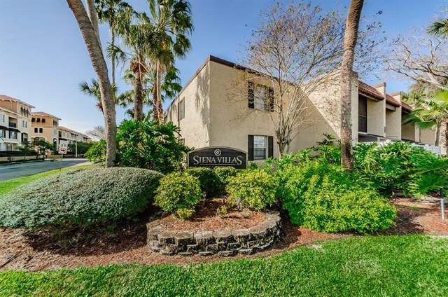 108 Alameda Court #336, Tampa, FL 33609 (MLS #T3293407) :: Zarghami Group