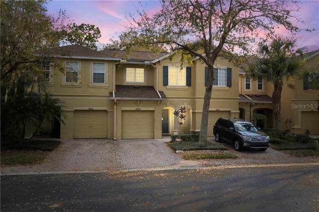 10623 Shady Falls Court, Riverview, FL 33578 (MLS #T3293410) :: The Price Group