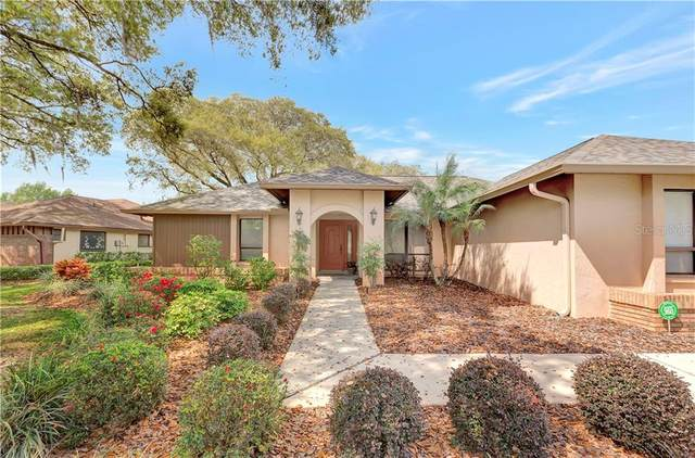 15910 Amberly Drive, Tampa, FL 33647 (MLS #T3293477) :: Pepine Realty